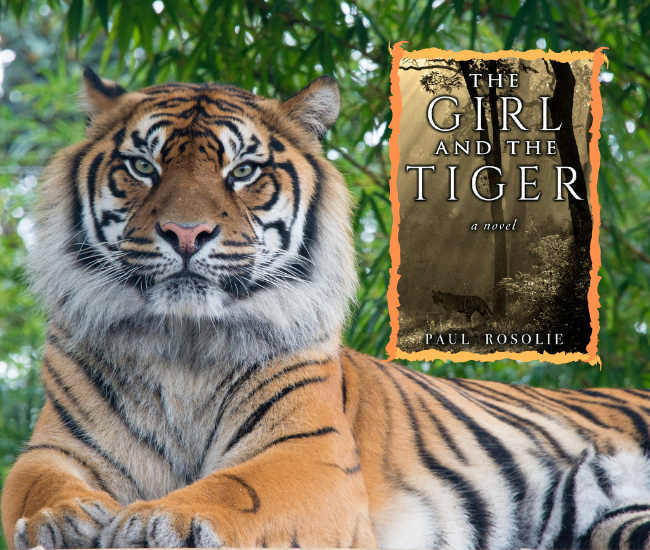 The Girl and the Tiger cover